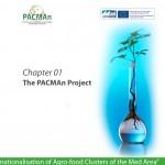PACMAn project - estudio gráfico deBase
