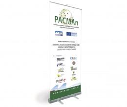 pacman - estudio gráfico deBase